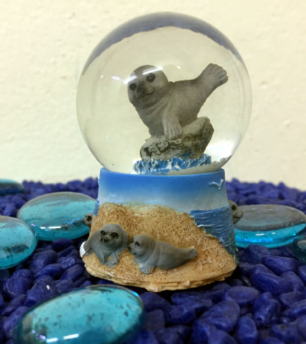 Sea Lion Glass Ocean Snow globe ~  C